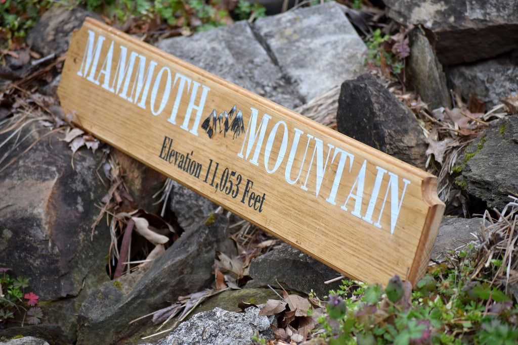 36 Quot X 6 Quot Custom Engraved Sign Create Your Own Country