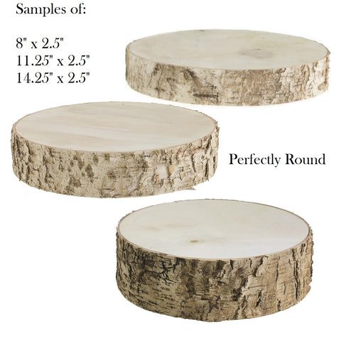 Wedding Birch Tree Slice - Birch  Wood Rounds