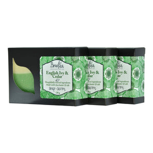 English Ivy & Cedar soap, gift packaging - Boudica Body Care