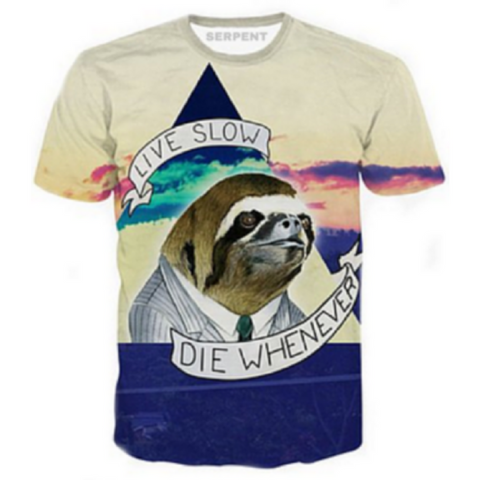 Sloth Top T-Shirt