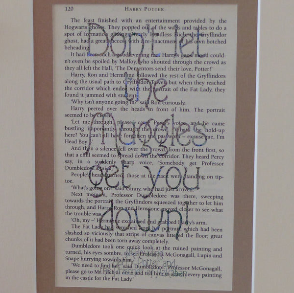 Harry Potter Don't let the muggles get you down! quote book page print