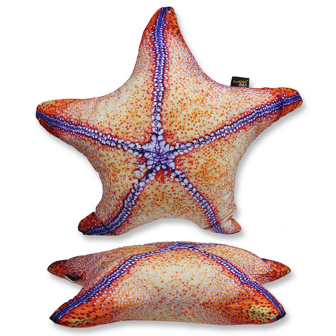 Rare Starfish Pillow