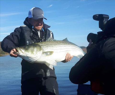 Striped Bass Striper Stripers New Brunswick Saint John Miramichi River Bay of Fundy Reversing Falls Cruise Charter Guide Saltwater Fishing Angling Fly Fishing Fishn' Canada Pete Bowman Steve Delaney East Coast Angler