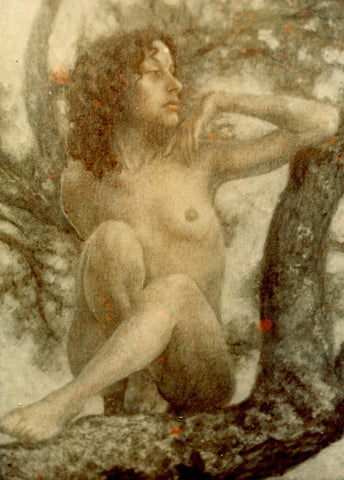 Nude in a Tree