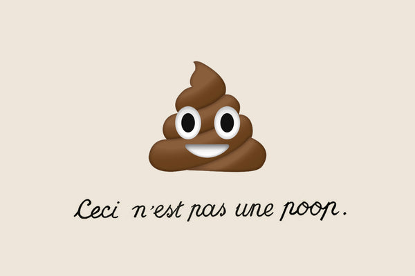 THE SCOOP ON POOP // The beauty in your routine