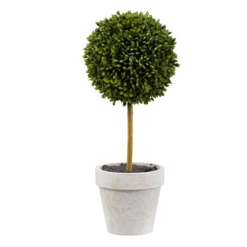 Boxed Topiary Set