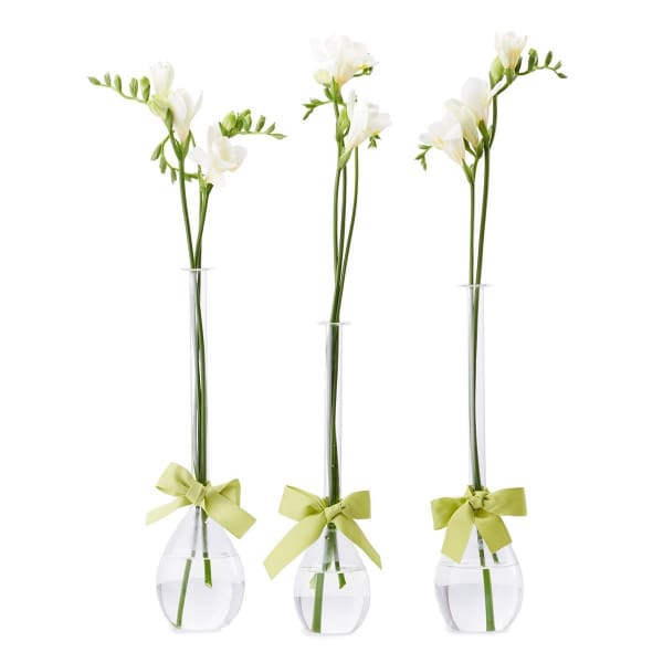 Teardrop Vase (set of 3)