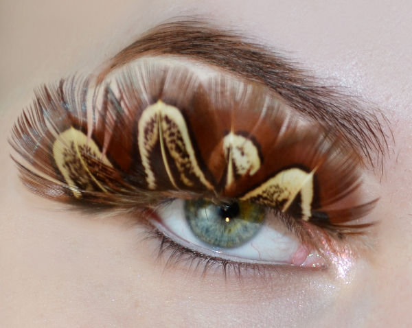 Big Feather False Eyelashes Brown #18588