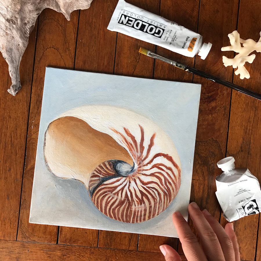 Finished Nautilus Shell Painting - acrylic on flat canvas board (perfect supplies for the traveling artist!)