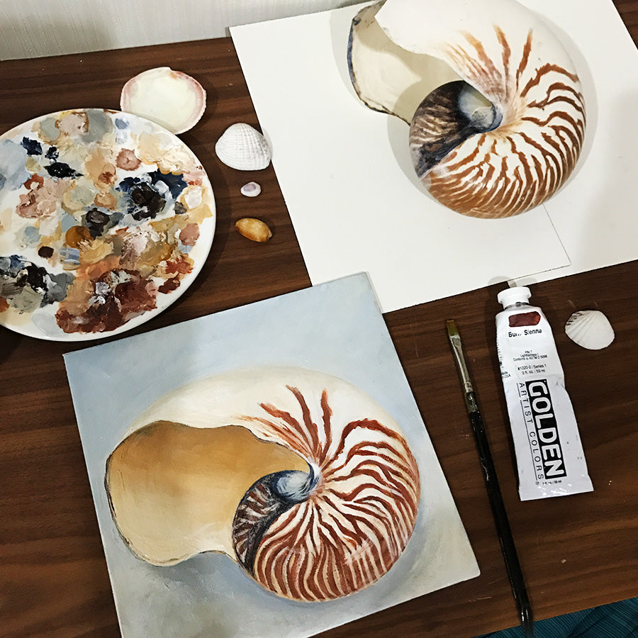 Painting a nautilus shell with acrylic paint, looking at the actual shell to paint