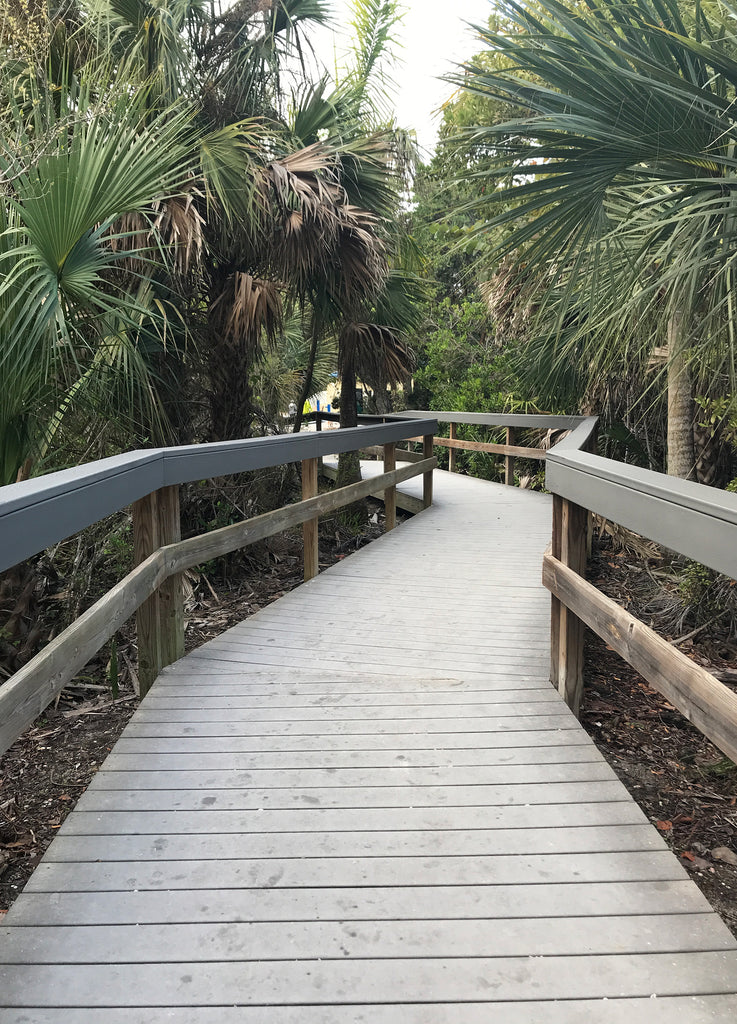 Path to the beach, Turner State Beach Florida Sanibel