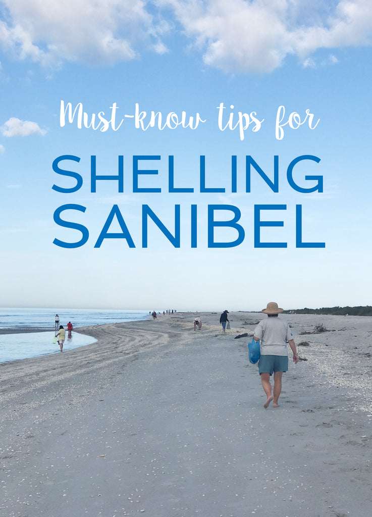 Sanibel Shelling Trip - Visiting one of the worlds best seashell beaches