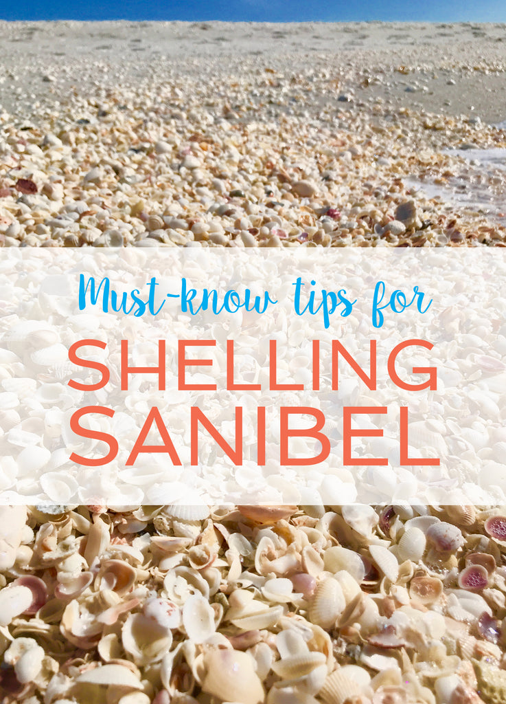 Must-know tips for shelling Sanibel