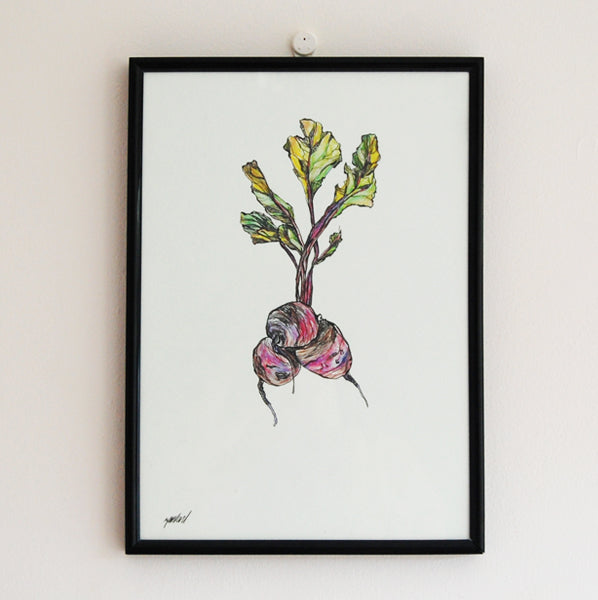 Beetroot Illustration A4 Print