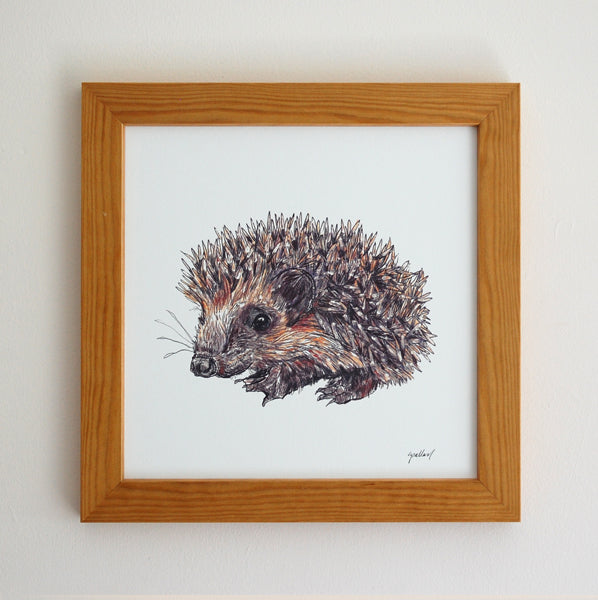 Hedgehog Illustration Print