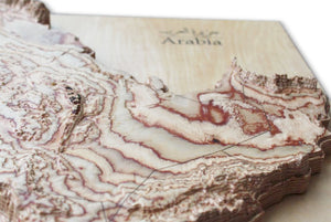 detail 3D wodo map of Arabian Peninsula