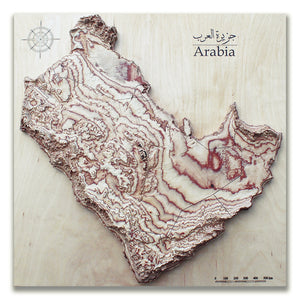 3D wood map of Arabian Peninsula