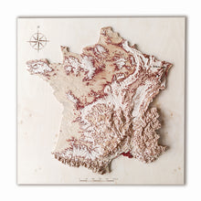 France 3D Wooden Map, natural colors