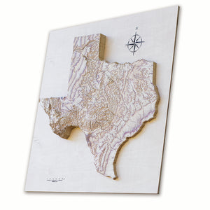 Topografic wallart of Texas in 3D