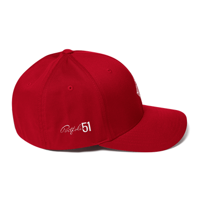 P51 Stretch Fit Cap