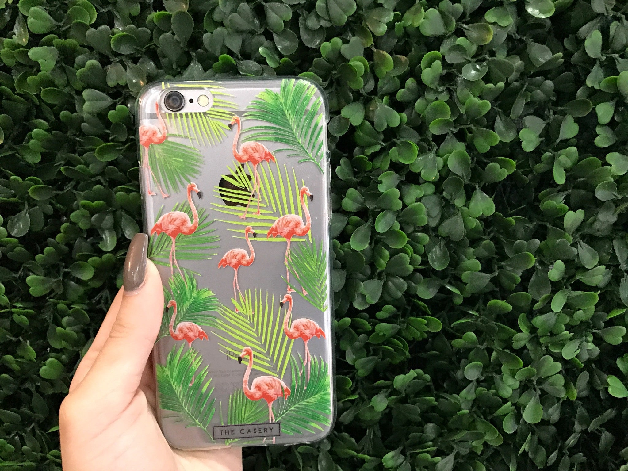 Fancy Flamingos iPhone