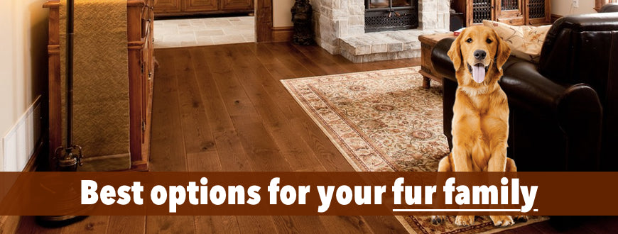 Dog Wood Flooring By Gaylords