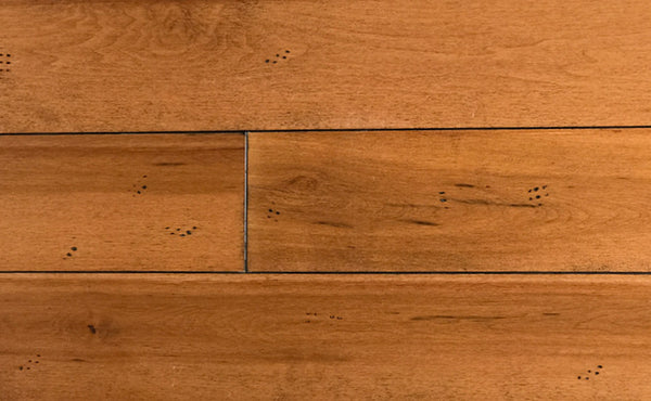 Maple Gran Marnier 1850 Hardwood Flooring