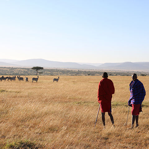Walking safari from the fair trade Basecamp with Maasai men in African dress.