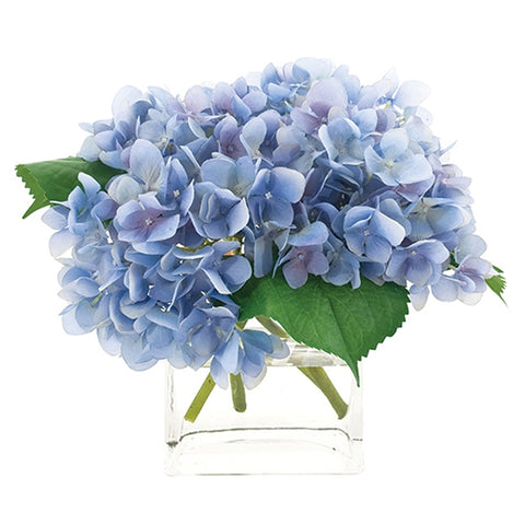 Blue Hydrangea in Glass Cube