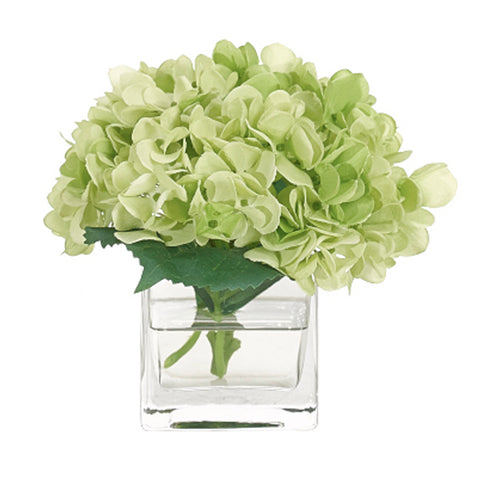 Green Hydrangea in Glass Cube Vase