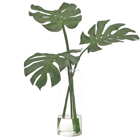 single monstera leaf in vase