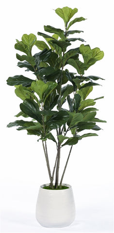 Deco Fig Tree