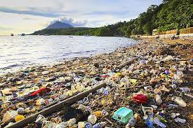 Plastic Pollution: the Numbers