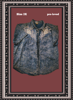 Club 2 denim top - a real eye-catcher size 3x