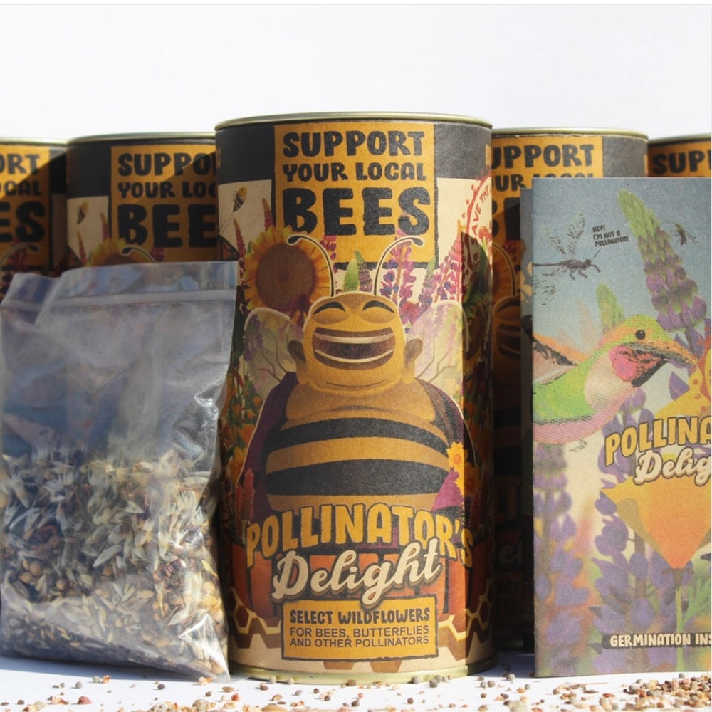 Pollinators Delight Wildflower Seeds