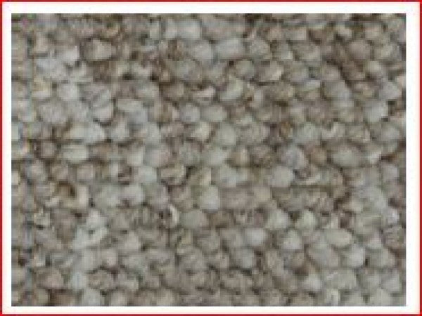 Buy Divine Wall To Wall Carpets, WW 145-72 Berber Beige -Online Happymonk India