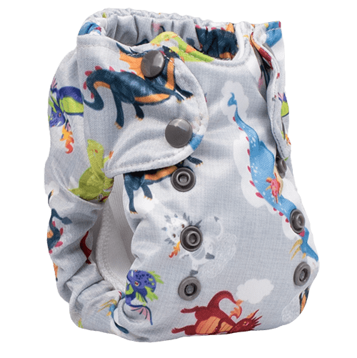 Smart Bottoms Born Smart 2.0 - Newborn All In One