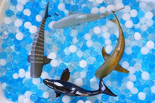 Sensory4u Dew Drops Swimming with Sharks Sensory Bin Kit