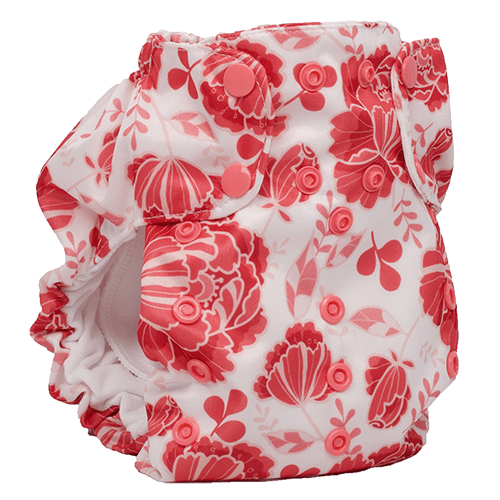 Smart Bottoms Dream Diaper 2.0 - One Size All In One