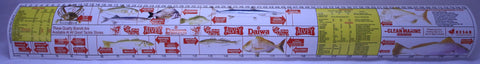 Fish Measure Sticker Ruler - Large 75cm