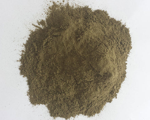 NETTLE LEAVES POWDER (STINGING) - Trade Technocrats Ltd