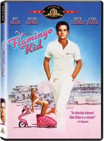 The Flamingo Kid DVD (Free Shipping)