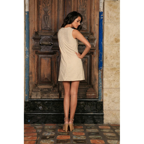 Beige Stretchy Lace Sleeveless Cute Cocktail Shift Mini Dress - Women