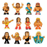 WWE Mystery Minis: (1 Blind Box) - Fugitive Toys