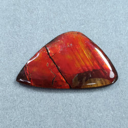 Rare Fire AMMOLITE Gemstone Cabochon : 65.40cts Natural Fossilized Shell Multi Color Ammolite Uneven Shape Cabochon 51*30mm 1pc For Jewelry
