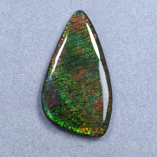 Rare Fire AMMOLITE Gemstone Cabochon : 105.45ct Natural Fossilized Shell Multi Color Ammolite Uneven Shape Cabochon 59*32mm 1pc For Jewelry