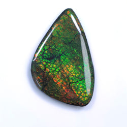 Rare Fire AMMOLITE Gemstone Cabochon : 106.75ct Natural Fossilized Shell Multi Color Ammolite Uneven Shape Cabochon 56*35mm 1pc For Jewelry