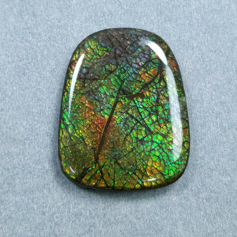 79.00cts Natural Rare Fossil Shell Multi Color Fire AMMOLITE Gemstone Uneven Shape Cabochon 39*31mm For Jewelry
