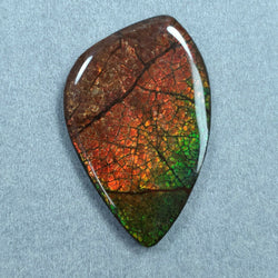 89.70cts Natural Rare Fossil Shell Multi Color Fire AMMOLITE Gemstone Uneven Shape Cabochon 54*35mm For Jewelry
