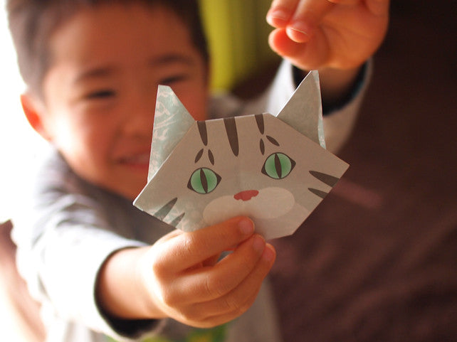 The Power Of Origami! Stimulate Your Brain With Origami.